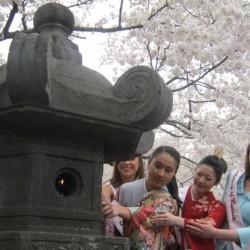 5. Лиза (крайняя справа) на церемонии зажигания старинной японской лампы 3 апреля 2011 года. Фото Людмилы Кларк